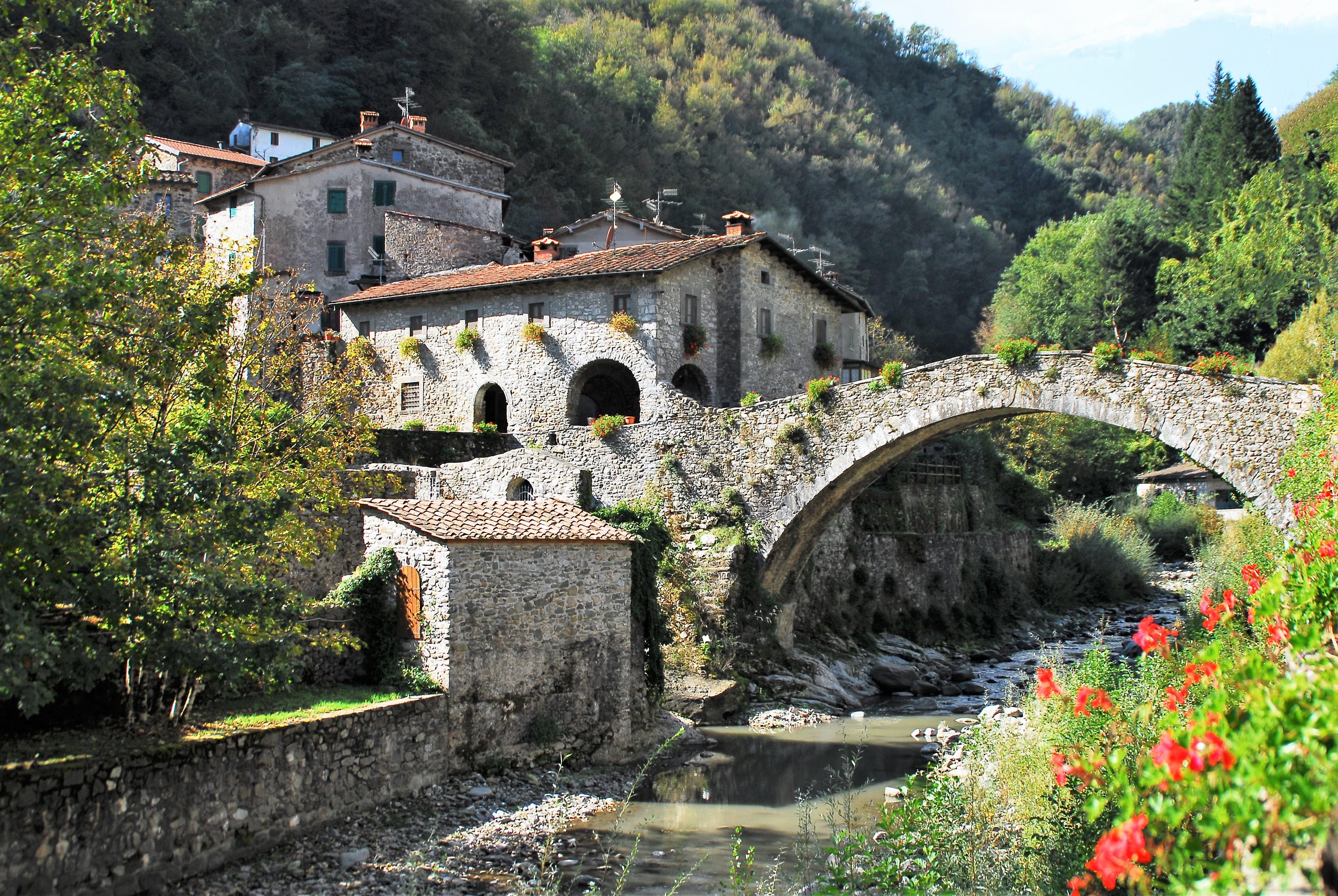 Ponte Dogana